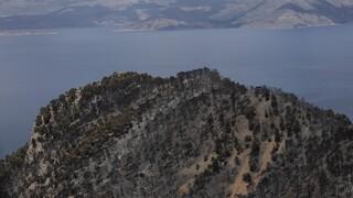 Ανυπολόγιστη οικολογική καταστροφή: Κάηκαν πάνω από 70.000 στρέμματα στα Γεράνια Όρη