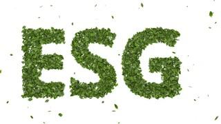 Τι προσφέρουν οι αξιολογήσεις ESG σε επιχειρήσεις και επενδυτές