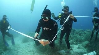 Την 1η Ιουνίου ανοίγει το πρώτο υποβρύχιο μουσείο της Ελλάδας, στην Αλόννησο