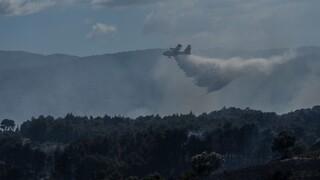 Αίγινα: Υπό έλεγχο η πυρκαγιά - Σε επιφυλακή η πυροσβεστική για τυχόν αναζωπυρώσεις