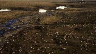 «Φρένο» Μπάιντεν στις εξορύξεις πετρελαίου στην Αλάσκα