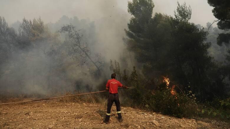 Συναγερμός στην Πυροσβεστική: Φωτιά στα Καλύβια Θορικού