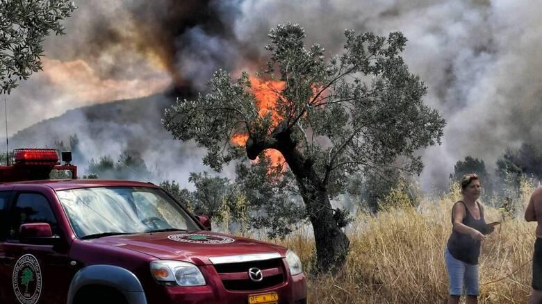 Συναγερμός στην Πυροσβεστική: Φωτιά στο Κιάτο κοντά σε σπίτια