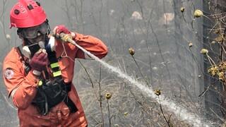 Φωτιά στην Πυλαία Θεσσαλονίκης: Επιχειρούν ισχυρές πυροσβεστικές δυνάμεις