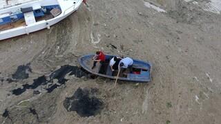 Θάλασσα του Μαρμαρά: H Άγκυρα δεσμεύεται να καταπολεμήσει την οικολογική καταστροφή