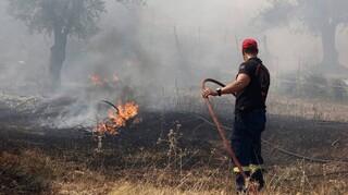 Συναγερμός στην Πυροσβεστική: Πυρκαγιά ξέσπασε στην Εύβοια