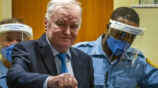 Ράτκο Μλάντιτς: Οριστική η καταδίκη σε ισόβια για τον «χασάπη της Βοσνίας»