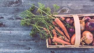 «Επιβραβεύστε τους αγρότες για τη βιωσιμότητα»