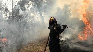 Φωτιά σε δασική έκταση στα Μοιραίικα της Πάτρας - Υπό έλεγχο η πυρκαγιά στο Λαύριο