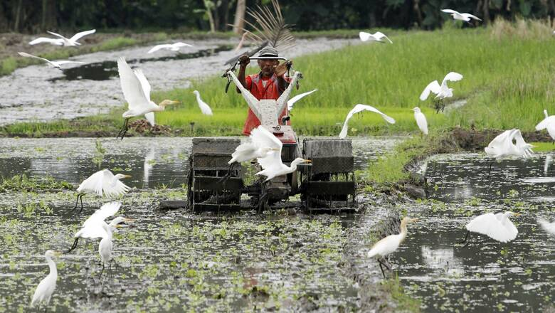 Ασία: Εμβολιαστείτε και κερδίστε... κότες, αγελάδες ακόμα και διαμερίσματα
