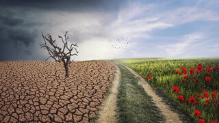 Κλιματική αλλαγή: Μείζον πρόβλημα για τη συντριπτική πλειοψηφία των Ελλήνων