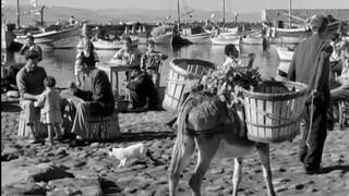 Στο θερινό Λαΐς άγνωστα ελληνικά αριστουργήματα από τη συλλογή της Ταινιοθήκης