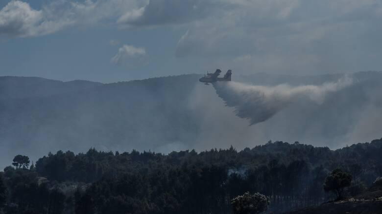 Συναγερμός στην Πυροσβεστική: Πυρκαγιά στην Λευκίμμη Κέρκυρας