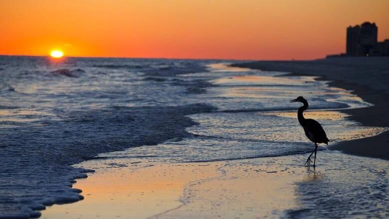 Τρία χρόνια, 4.820χλμ: Ένα μήνυμα σε μπουκάλι ταξίδεψε στον Ατλαντικό για να ενώσει δύο έφηβους