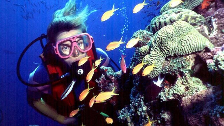 Σε κίνδυνο ο Μεγάλος Κοραλλιογενής Ύφαλος, προειδοποιεί η UNESCO