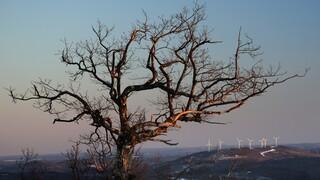 ΟΗΕ: Η ανθρωπότητα στο έλεος των επιπτώσεων της κλιματικής αλλαγής