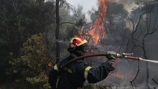 Φωτιά στον Νέο Βουτζά κοντά στο Λύρειο Ίδρυμα