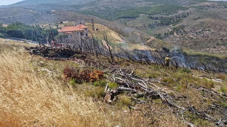 Υπό έλεγχο τέθηκε η πυρκαγιά στο Νέο Βουτζά