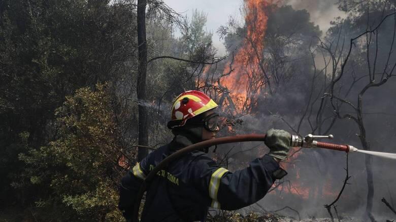 Φωτιά στη Βραυρώνα - Επί ποδός η πυροσβεστική