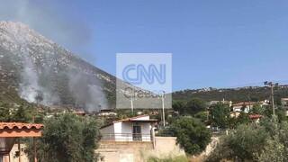 Φωτιά τώρα στην Αλυκή Θήβας: Ισχυρή δύναμη της πυροσβεστικής στην περιοχή
