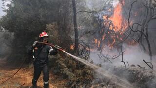 Μεγάλη φωτιά στα όρια των νομών Ηρακλείου - Λασιθίου