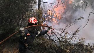 Δύσκολη νύχτα για την Πυροσβεστική: Τρία πύρινα μέτωπα στην Κρήτη