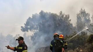 Φωτιά τώρα σε Σαλαμίνα και Κρήτη: Ισχυρή δύναμη της πυροσβεστικής στις δύο περιοχές