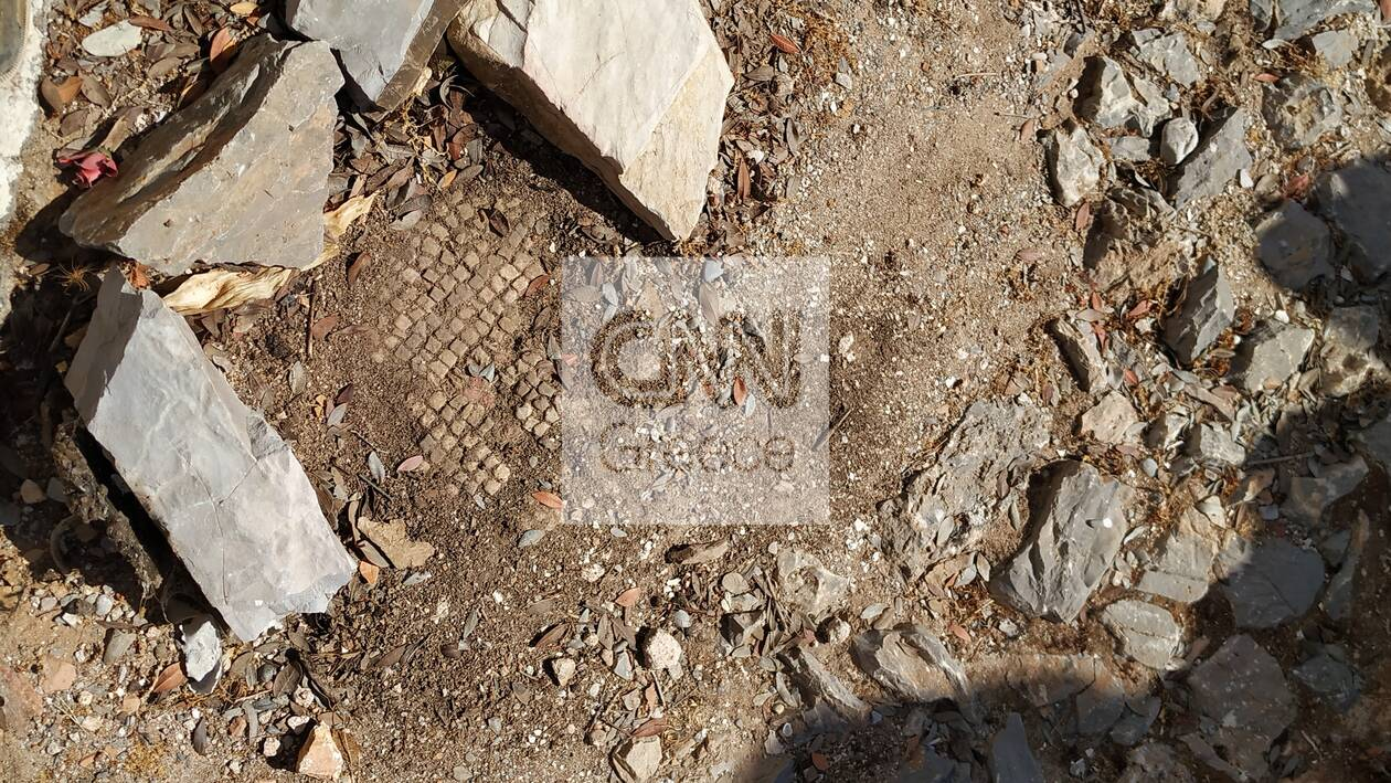 https://cdn.cnngreece.gr/media/news/2021/07/02/272509/photos/snapshot/saria_01.jpg