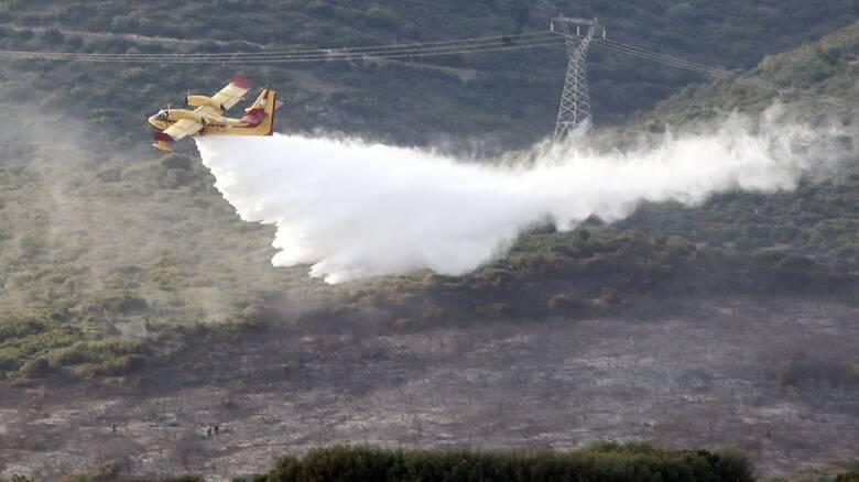 Φωτιά σε δασική έκταση στην Μεγαλόπολη - Ισχυρή δύναμη της Πυροσβεστικής