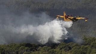 Σε κλοιό πυρκαγιών η χώρα: Σε εξέλιξη πέντε μέτωπα σε Μεγαλόπολη, Αχαΐα, Κιλκίς και Λάρισα
