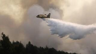 Μεγάλη πυρκαγιά στην Κεφαλονιά: Με εντολή δημάρχου εκκενώνεται η περιοχή Καπανδρίτι