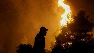 Κεφαλονιά: Εφιαλτική νύχτα για τους κατοίκους - Μεγάλη «μάχη» σε επτά πύρινα μέτωπα