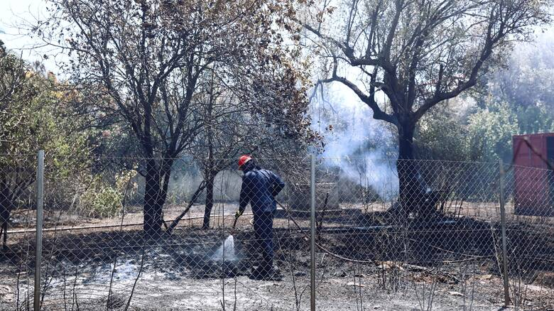 Υπουργός Εσωτερικών Κύπρου: Βιώνουμε την καταστροφικότερη πυρκαγιά από την ίδρυση του κράτους
