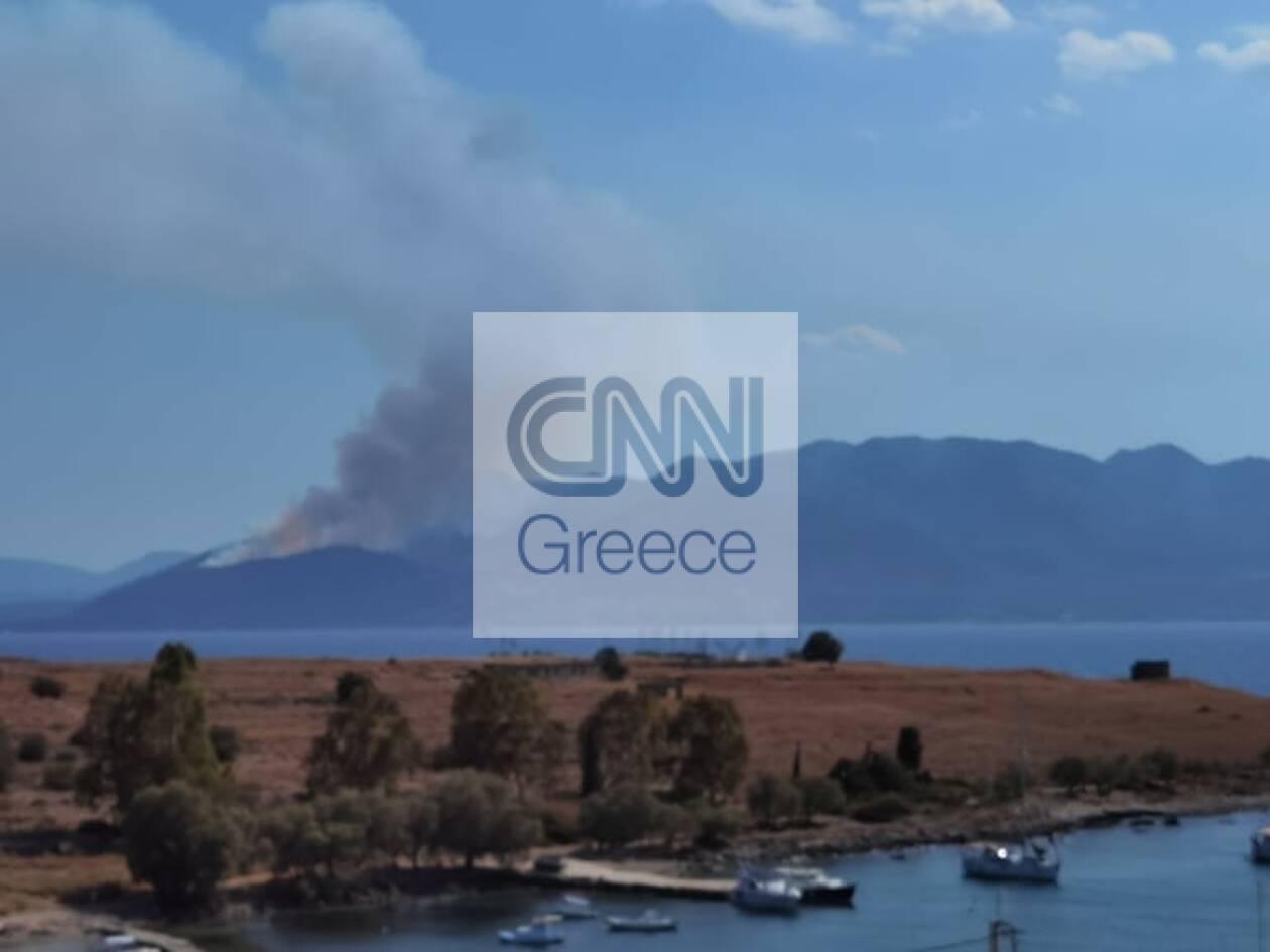 https://cdn.cnngreece.gr/media/news/2021/07/04/272749/photos/snapshot/fotia-methana2.jpg
