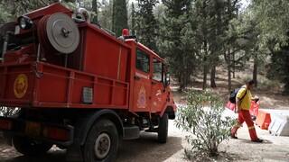 Σε 68 ανέρχονται οι φωτιές που εκδηλώθηκαν το τελευταίο εικοσιτετράωρο