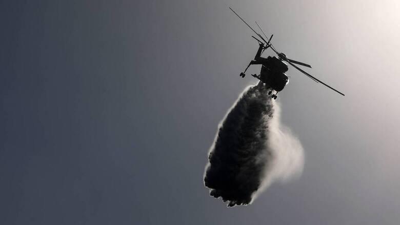 Φωτιά ξέσπασε στην Άνδρο: Επιχειρούν επίγειες δυνάμεις και εναέρια μέσα