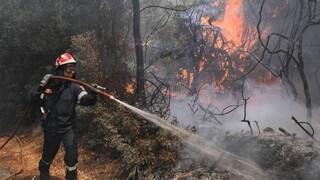 Φωτιές λόγω κεραυνών στους πρόποδες της Πάρνηθας και τον Διόνυσο