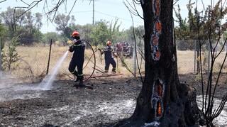 Κύπρος: Υπό έλεγχο η φωτιά στην επαρχία Λευκωσίας