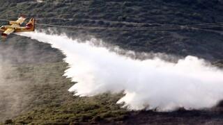 Κεφαλονιά: Περίπου 6.000 στρέμματα καταστράφηκαν – Η εικόνα από τον δορυφόρο Sentinel-2