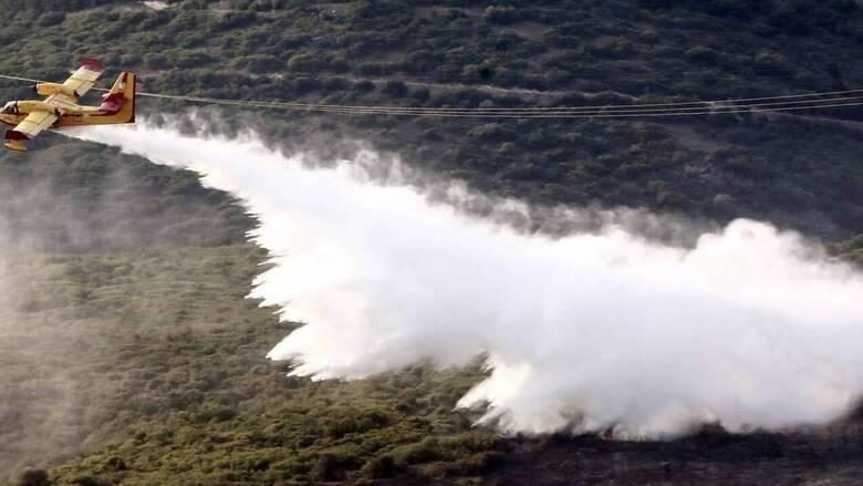 Φωτιά στη Χίο: Στο σημείο επιχειρούν ισχυρές πυροσβεστικές δυνάμεις