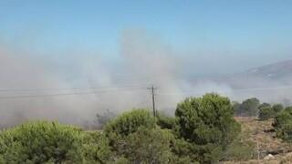 Χίος: Καλύτερη η εικόνα της πυρκαγιάς - Υπό μερικό έλεγχο η φωτιά στην Ύδρα