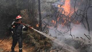 Κύπρος: Φωτιά στο Πέρα Πεδί Λεμεσού- Επιχειρούν επίγειες και εναέριες δυνάμεις πυρόσβεσης