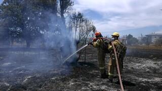 Φωτιά στην Λευκίμμη του Δήμου Σουφλίου - Εκκενώνεται η περιοχή