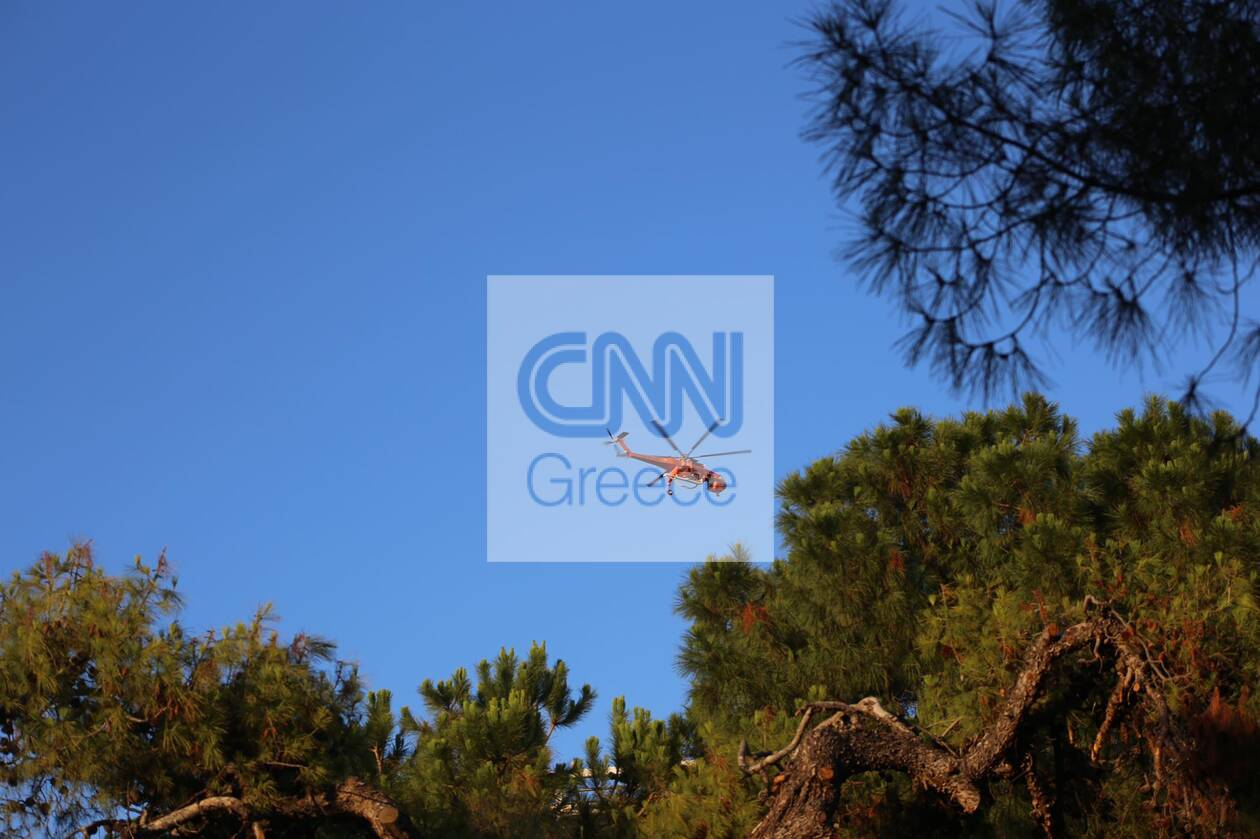 https://cdn.cnngreece.gr/media/news/2021/07/09/273492/photos/snapshot/fotia-anavyssos-8.jpg