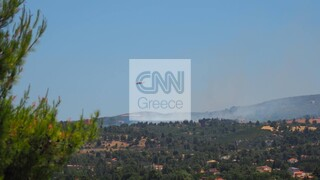 Συναγερμός στην πυροσβεστική - Φωτιά σε Βαρνάβα και Ελευσίνα