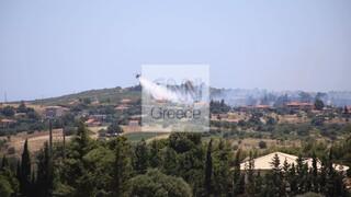 Φωτιές στην Αττική: Ενισχύονται οι δυνάμεις στον Βαρνάβα - Σε εξέλιξη η πυρκαγιά στην Ελευσίνα