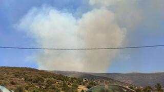 Φωτιά στα Στύρα Εύβοιας - Πυρκαγιά και στη Νέα Ιωνία Βόλου