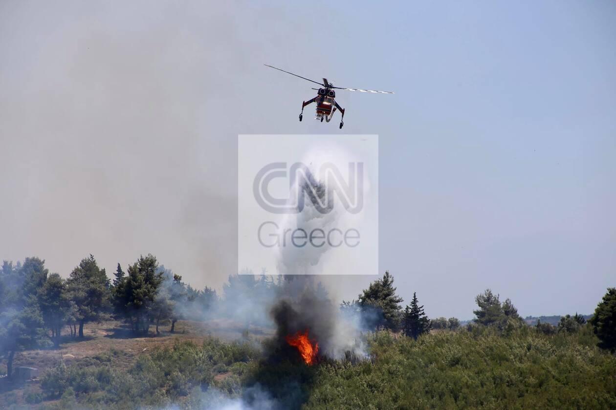 https://cdn.cnngreece.gr/media/news/2021/07/10/273585/photos/snapshot/fotia-varnava4.jpg