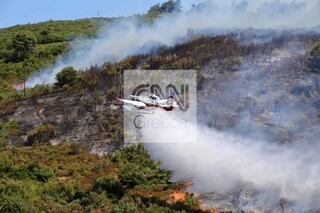Πυρκαγιές: Έκτακτη ενημέρωση Χαρδαλιά για τα πύρινα μέτωπα