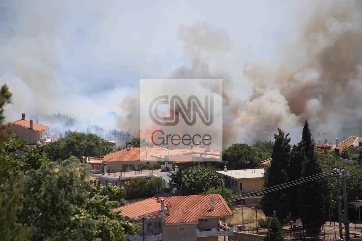 https://cdn.cnngreece.gr/media/news/2021/07/10/273593/photos/snapshot/fotia-barnava-_n-23.jpg